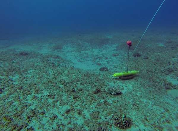 Oceanographic data taken over a fringing coral reef near Makua Beach, Oahu, Hawai'i (2013)