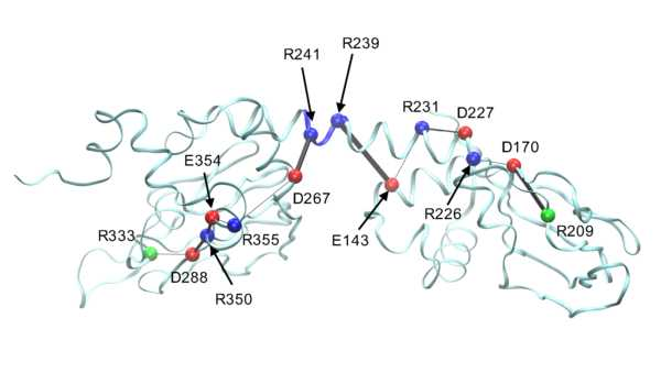 Data from: Electrostatic interactions as mediators in the allosteric activation of PKA RIalpha