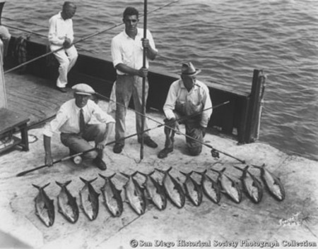 Fishermen with rods posing with catch of tuna on deck of [Point Loma?] fishing barge