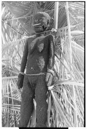 Fernwood 'ea female figure sculpted by Arimae of Furi'ilae, 1979.