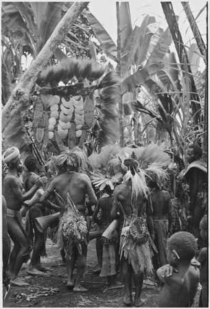 Bride price ritual: decorated men dance with payment banner of feather and shell valuables