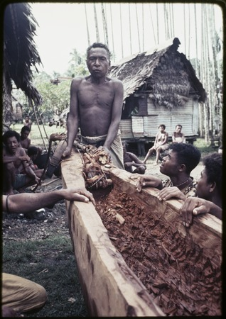 Canoe-building: man (center) says a spell while cutting vine rope from the hollowed out log