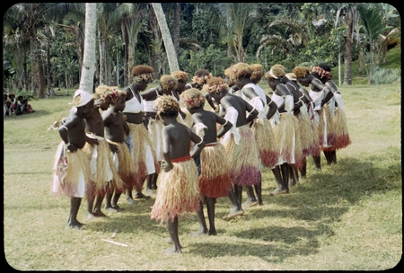 Dancers in grass skirts and matching headress, some with western dress or tops