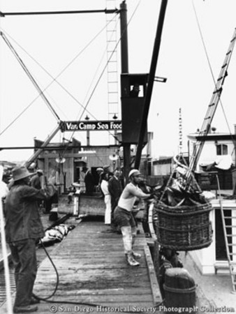 Unloading tuna from boat at Van Camp Sea Food Company cannery