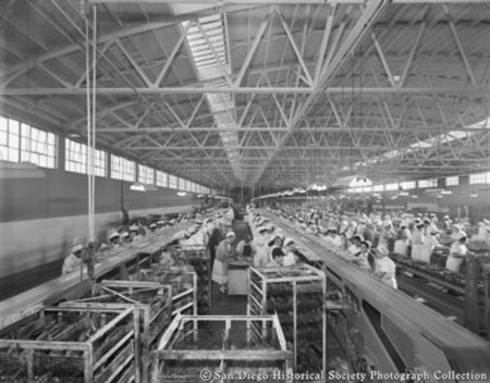 Cannery workers, Westgate Sea Products Company