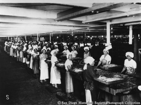 Women packing tuna at Van Camp Sea Food Company cannery
