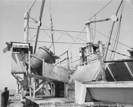 Unloading tuna from boat docked at San Diego cannery