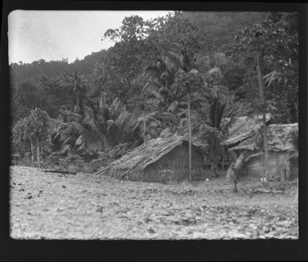 Group of small dwellings on Rennell Island.