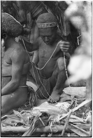 Pig festival, wig ritual, Tsembaga: man (l) in red wig is bedecked with strings of shell beads