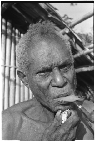 An elderly Kwaio man shaves by pulling out his whiskers with a clam shell.