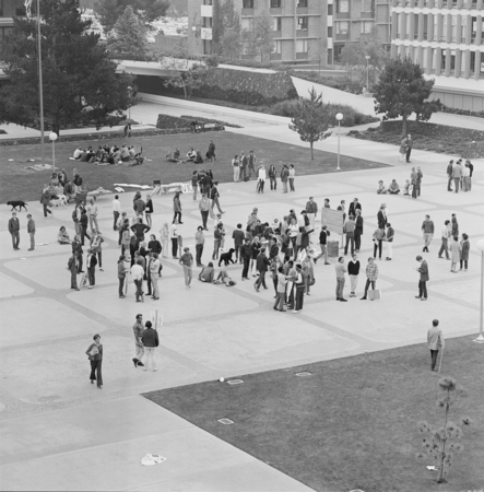 """Torraus, Police, Student Disturbance"" [Students gathering at Revelle Plaza, cMay 26, 1969]"