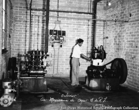 Interior view of American Agar and Chemical Company's Baja California plant