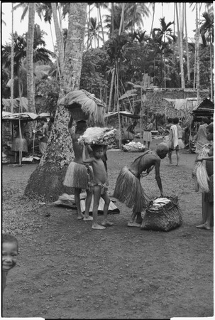 Mortuary ceremony, Omarakana: mourning women and children carry fiber skirts and baskets of banana leaf bundles for ritual...