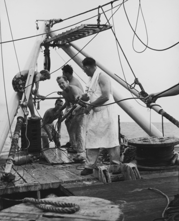 The last station, MidPac Expedition on the Horizon. Frank Vaughn, ship's cook, in foreground. Russell W. Raitt, SIO geolog...