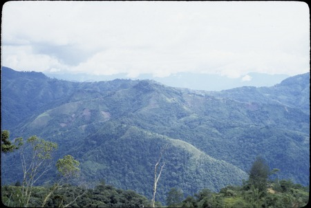 Jimi River area, panoramic view 03: mountains and gardens