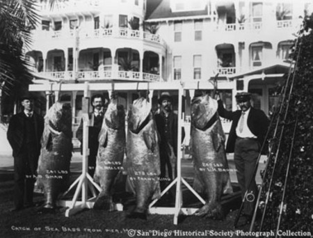 [Four men posing with catch of giant sea bass in front of Hotel del Coronado]