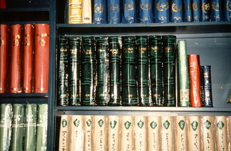"A Lesson in Civics: detail of ""books"" on bookshelf"