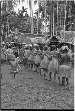 Mortuary ceremony, Omarakana: women carry fiber skirts and banana leaf bundles, approach the bereaved spouse