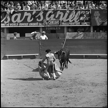 Bullfighting at La Plaza de Toros El Toreo de Tijuana