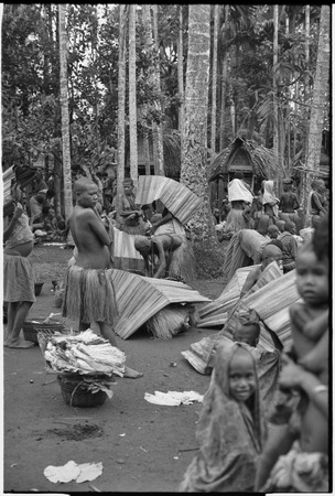 Mortuary ceremony, Omarakana: women unfold mats to cover themselves and banana leaf bundles and skirts from rain