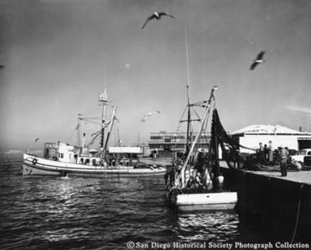 Docked fishing boats, fishermen tending net on Kathy Jane