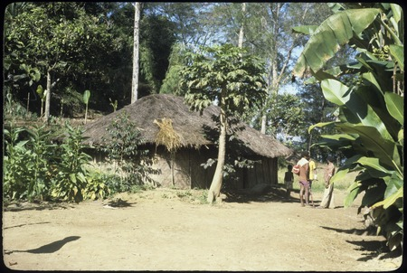 Dikai's house and garden