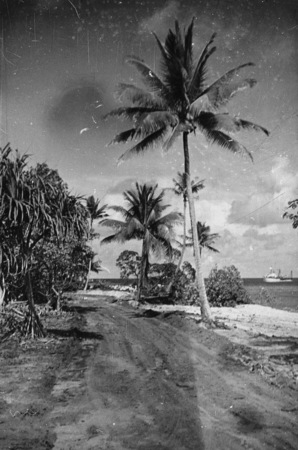 R/V Horizon (ship) off in the distance as seen from Eninman Island (part of the Marshall Islands) photographed by Alan C. ...