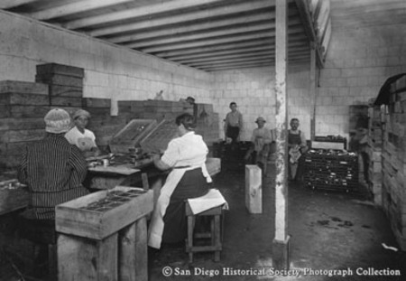 Cannery workers packing fish at Normandy Sea Food Company