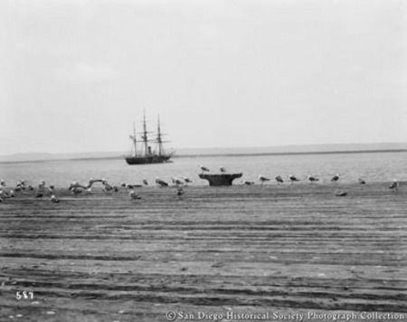 Gulls on dock with sailing ship in distance on San Diego Bay