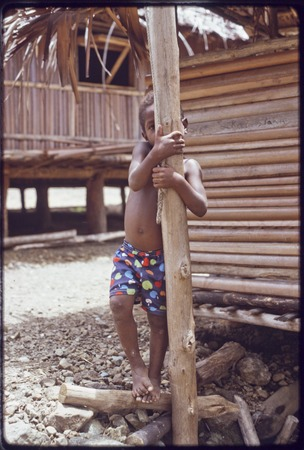 Kairiru: child climbs house post