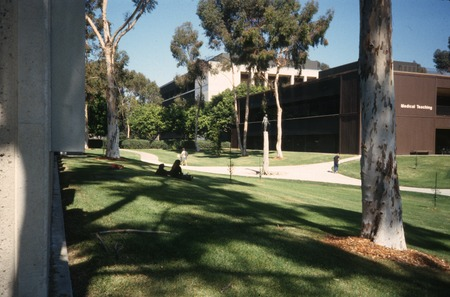Standing: distant view with UCSD School of Medicine in background