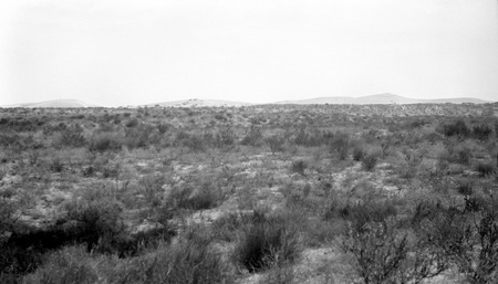Facing northeast toward active dune near Socorro