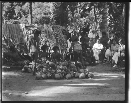 Group of men working with pile of coconuts, European men observing in the back.