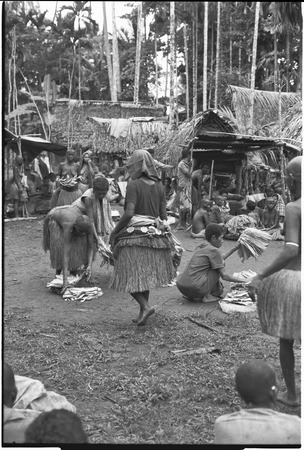 Mortuary ceremony, Omarakana: mourning women count banana leaf bundles for ritual exchange, woman in center wears decorate...