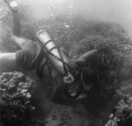 Diver, either Walter Munk or Robert Livingston, doing some underwater field work during the Capricorn Expedition (1952-195...
