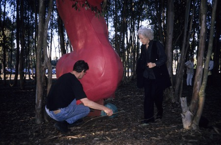Red Shoe: installation