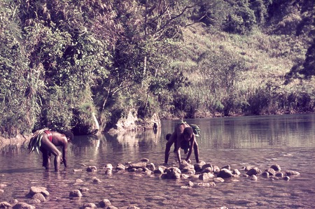 Young men constructing a weir in the Erave River