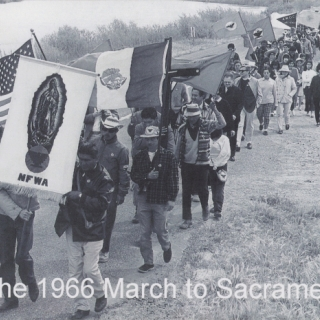 MARCHERS GREW TO THOUSANDS, HERE WE ARE COMING CLOSER TO SACRAMENTO, THE END IS NOT TOO FAR.